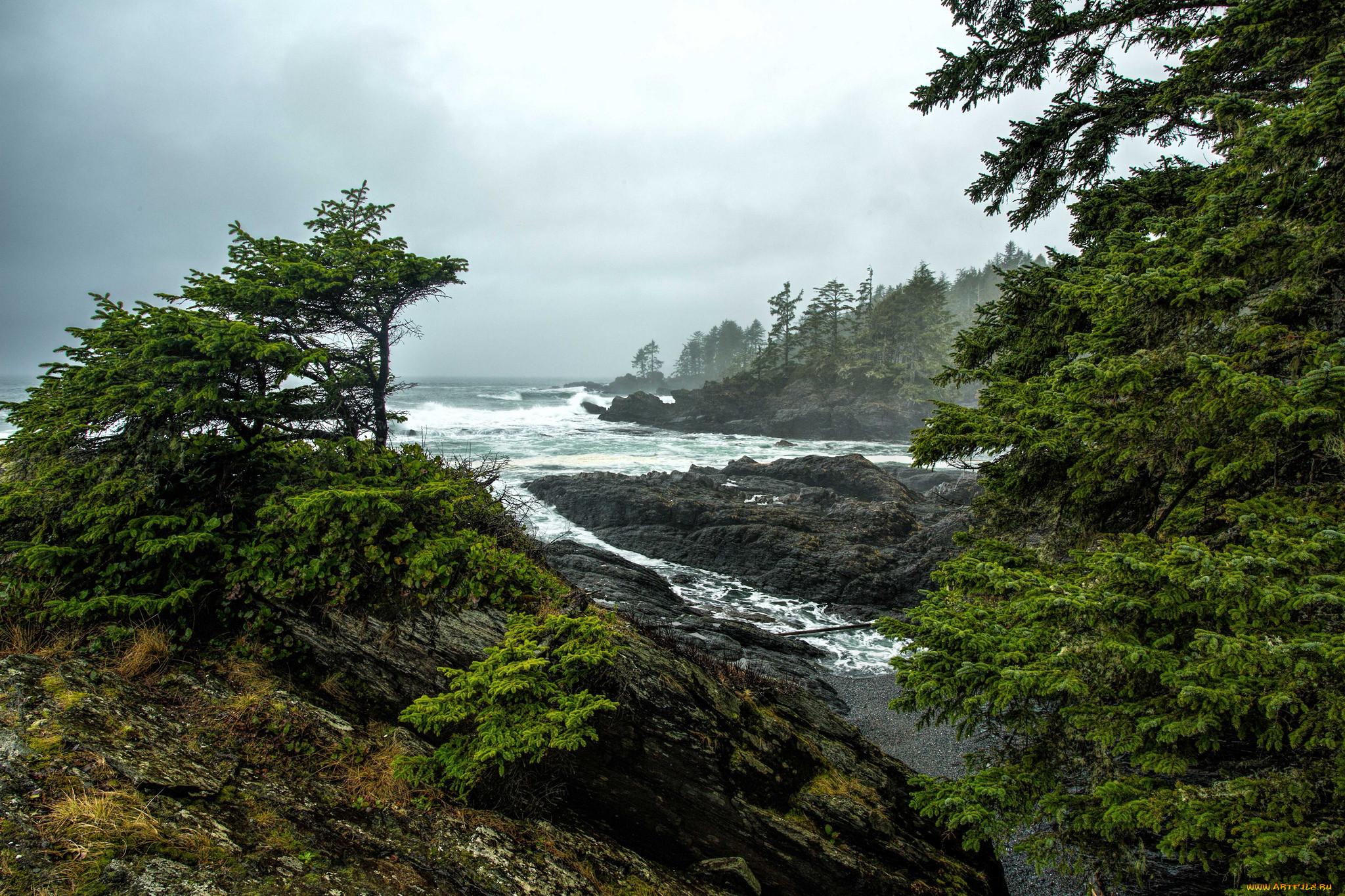 Картинки природа побережье
